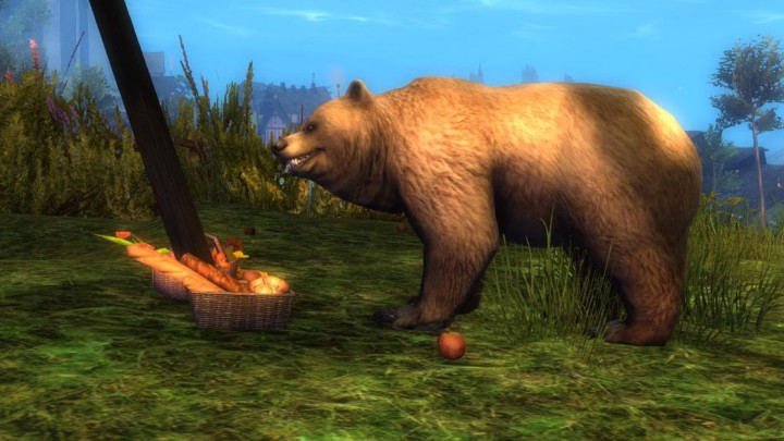 Guild Wars 2 Inquisitive Bear