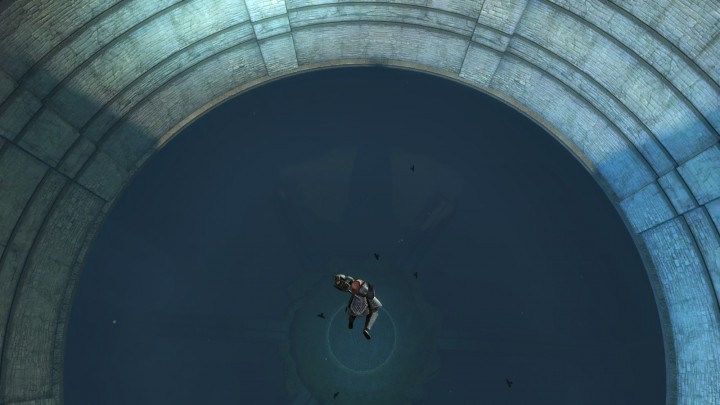 Guild Wars 2 Swan Dive